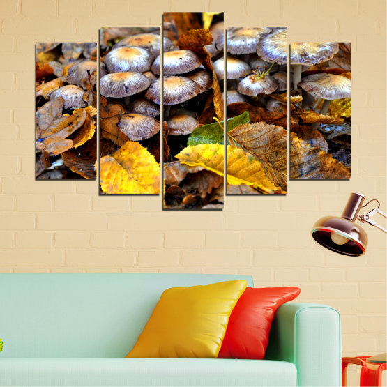 Canvas prints & wall decorative panels - 5 pieces №0523 » Brown, Black, Gray, Dark grey » Nature, Autumn, Mushrooms Form #1