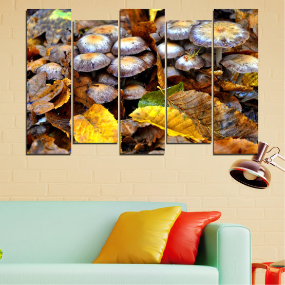 Canvas prints & wall decorative panels - 5 pieces №0523 » Brown, Black, Gray, Dark grey » Nature, Autumn, Mushrooms Form #3