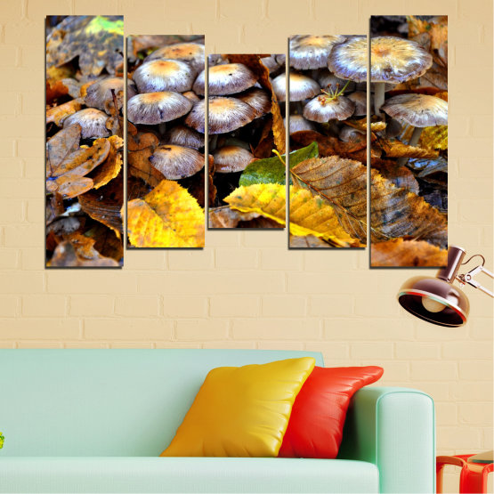 Canvas prints & wall decorative panels - 5 pieces №0523 » Brown, Black, Gray, Dark grey » Nature, Autumn, Mushrooms Form #4