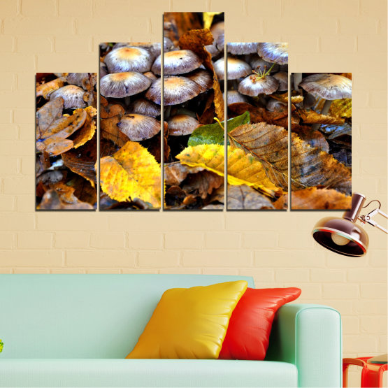 Canvas prints & wall decorative panels - 5 pieces №0523 » Brown, Black, Gray, Dark grey » Nature, Autumn, Mushrooms Form #5