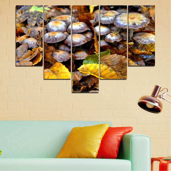 Canvas prints & wall decorative panels - 5 pieces №0523 » Brown, Black, Gray, Dark grey » Nature, Autumn, Mushrooms Form #6