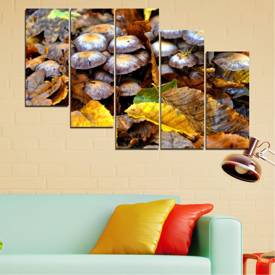 Canvas prints & wall decorative panels - 5 pieces №0523 » Brown, Black, Gray, Dark grey » Nature, Autumn, Mushrooms Form #7