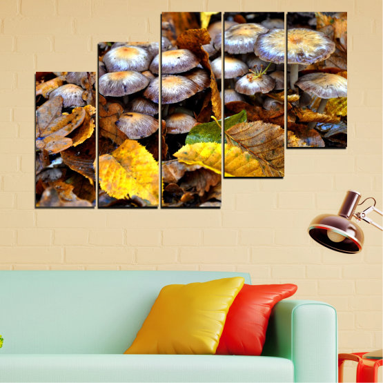 Canvas prints & wall decorative panels - 5 pieces №0523 » Brown, Black, Gray, Dark grey » Nature, Autumn, Mushrooms Form #8