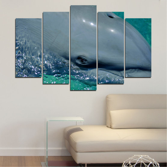 Canvas prints & wall decorative panels - 5 pieces №0532 » Purple, Blue, Black, Gray, Dark grey » Animal, Water, Dolphin, Fish Form #1
