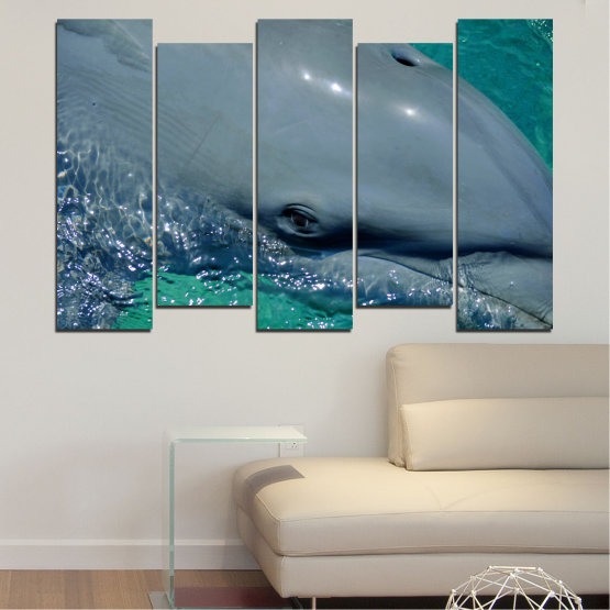 Canvas prints & wall decorative panels - 5 pieces №0532 » Purple, Blue, Black, Gray, Dark grey » Animal, Water, Dolphin, Fish Form #3