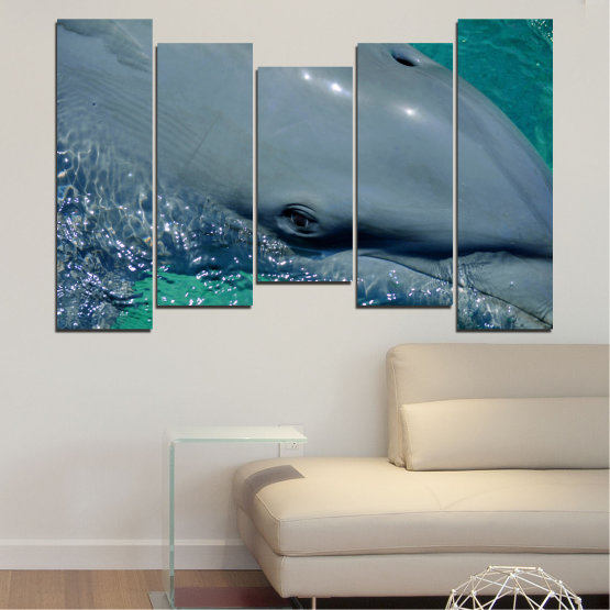 Canvas prints & wall decorative panels - 5 pieces №0532 » Purple, Blue, Black, Gray, Dark grey » Animal, Water, Dolphin, Fish Form #4