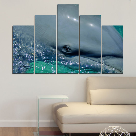 Canvas prints & wall decorative panels - 5 pieces №0532 » Purple, Blue, Black, Gray, Dark grey » Animal, Water, Dolphin, Fish Form #5