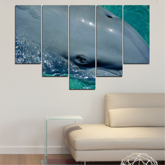 Canvas prints & wall decorative panels - 5 pieces №0532 » Purple, Blue, Black, Gray, Dark grey » Animal, Water, Dolphin, Fish Form #6