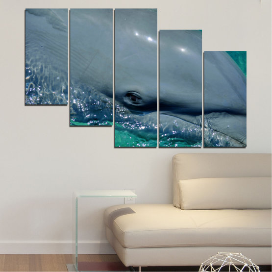 Canvas prints & wall decorative panels - 5 pieces №0532 » Purple, Blue, Black, Gray, Dark grey » Animal, Water, Dolphin, Fish Form #7