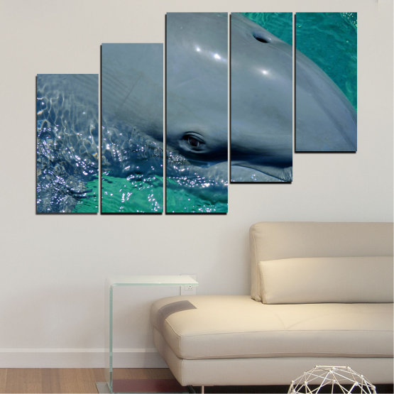 Canvas prints & wall decorative panels - 5 pieces №0532 » Purple, Blue, Black, Gray, Dark grey » Animal, Water, Dolphin, Fish Form #8