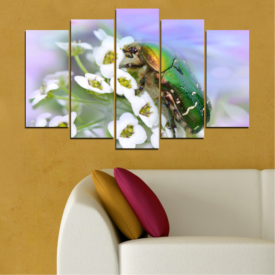 Canvas prints & wall decorative panels - 5 pieces №0538 » Brown, Gray, White » Flowers, Animal, Beetle Form #1