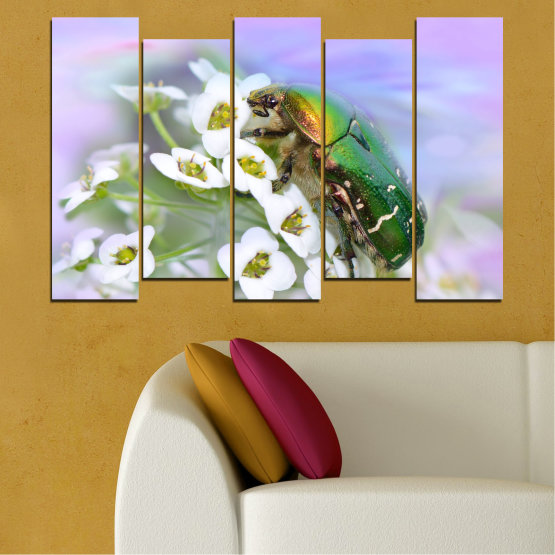 Canvas prints & wall decorative panels - 5 pieces №0538 » Brown, Gray, White » Flowers, Animal, Beetle Form #3