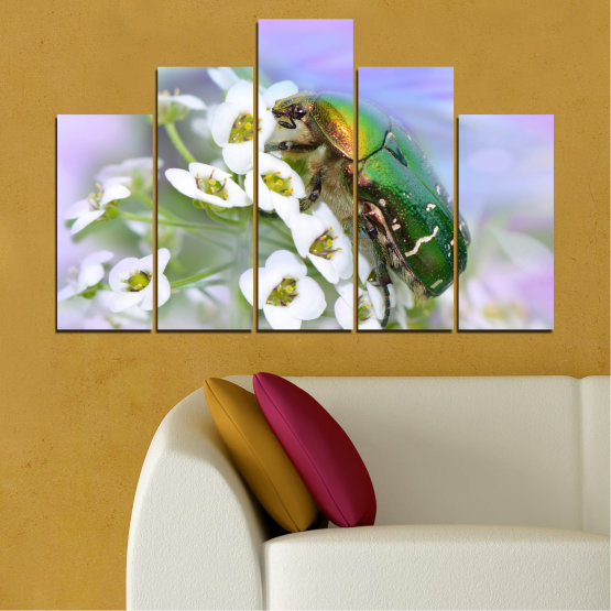 Canvas prints & wall decorative panels - 5 pieces №0538 » Brown, Gray, White » Flowers, Animal, Beetle Form #5