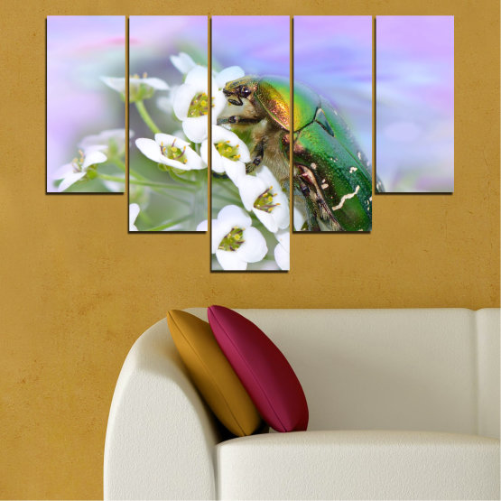Canvas prints & wall decorative panels - 5 pieces №0538 » Brown, Gray, White » Flowers, Animal, Beetle Form #6