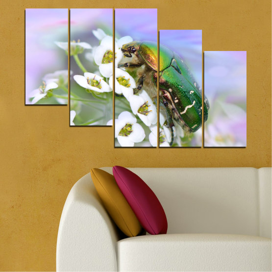 Canvas prints & wall decorative panels - 5 pieces №0538 » Brown, Gray, White » Flowers, Animal, Beetle Form #7