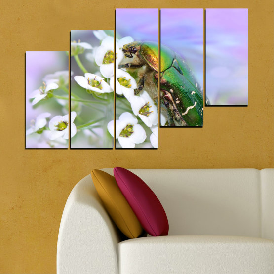 Canvas prints & wall decorative panels - 5 pieces №0538 » Brown, Gray, White » Flowers, Animal, Beetle Form #8