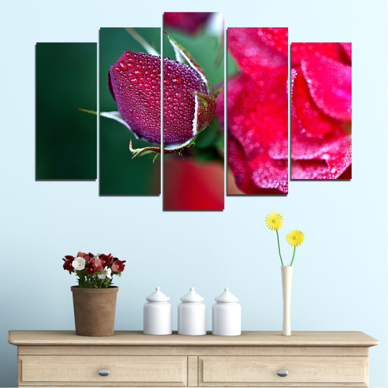Canvas prints & wall decorative panels - 5 pieces №0539 » Red, Pink, Black, Dark grey » Flowers, Rose, Drops Form #1