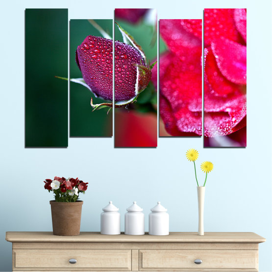 Canvas prints & wall decorative panels - 5 pieces №0539 » Red, Pink, Black, Dark grey » Flowers, Rose, Drops Form #3