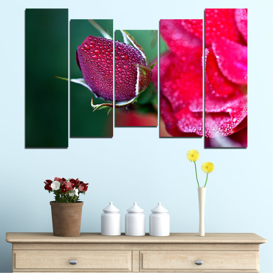 Canvas prints & wall decorative panels - 5 pieces №0539 » Red, Pink, Black, Dark grey » Flowers, Rose, Drops Form #4