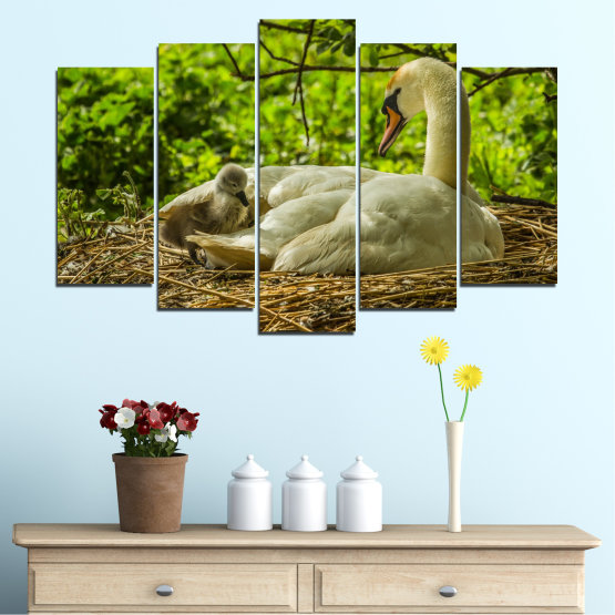 Canvas prints & wall decorative panels - 5 pieces №0545 » Green, Brown » Nature, Birds, Swan Form #1