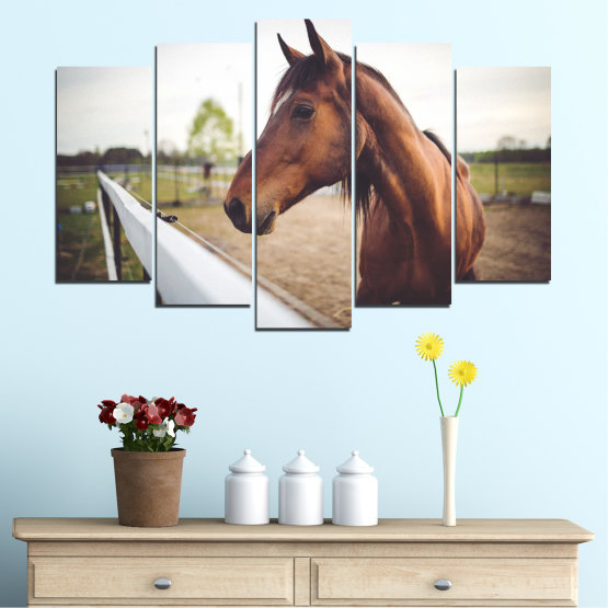 Canvas prints & wall decorative panels - 5 pieces №0556 » Brown, Gray, White, Dark grey » Animal, Horse, Portrait Form #1