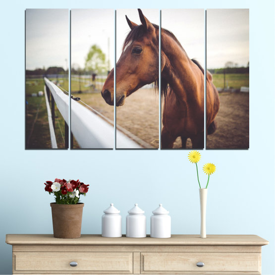 Canvas prints & wall decorative panels - 5 pieces №0556 » Brown, Gray, White, Dark grey » Animal, Horse, Portrait Form #2
