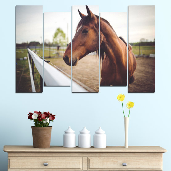 Canvas prints & wall decorative panels - 5 pieces №0556 » Brown, Gray, White, Dark grey » Animal, Horse, Portrait Form #3
