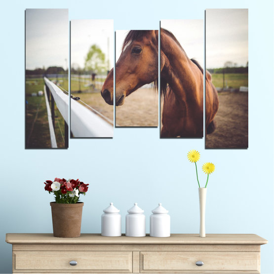 Canvas prints & wall decorative panels - 5 pieces №0556 » Brown, Gray, White, Dark grey » Animal, Horse, Portrait Form #4