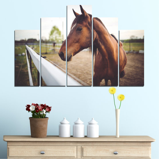 Canvas prints & wall decorative panels - 5 pieces №0556 » Brown, Gray, White, Dark grey » Animal, Horse, Portrait Form #5