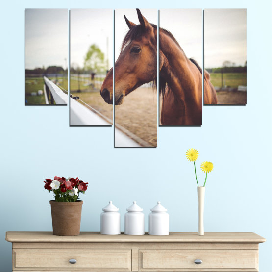 Canvas prints & wall decorative panels - 5 pieces №0556 » Brown, Gray, White, Dark grey » Animal, Horse, Portrait Form #6