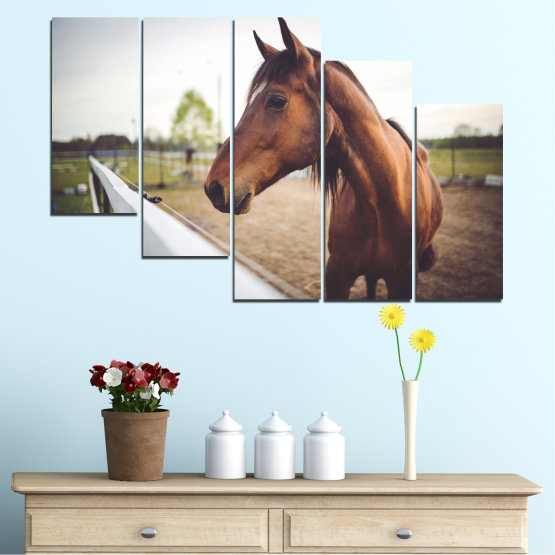 Canvas prints & wall decorative panels - 5 pieces №0556 » Brown, Gray, White, Dark grey » Animal, Horse, Portrait Form #7