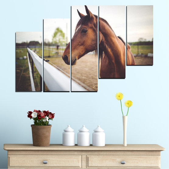 Canvas prints & wall decorative panels - 5 pieces №0556 » Brown, Gray, White, Dark grey » Animal, Horse, Portrait Form #8