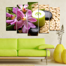Feng shui, Flowers, Orchid, Stones, Zen, Spa, Candle » Brown, Black, Gray, White, Beige