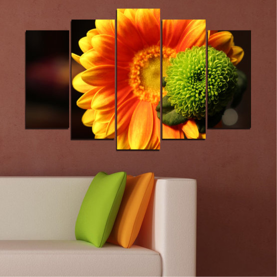 Canvas prints & wall decorative panels - 5 pieces №0583 » Red, Yellow, Orange, Black » Flowers, Collage, Gerbera Form #1