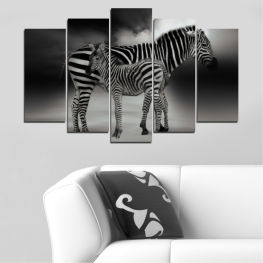 Animal, Collage, Portrait, Zebra » Brown, Black, Gray, Dark grey