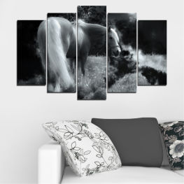 Animal, Nature, Horse » Black, Gray, Dark grey