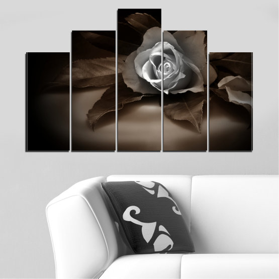 Декоративни панели и картини от канава - от 5 части №0590 » Кафяв, Черен, Сив, Тъмно сив » Цветя, Роза, Ретро Form #5