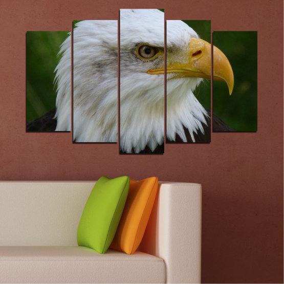 Canvas prints & wall decorative panels - 5 pieces №0613 » Green, Black, Gray, Dark grey » Birds, Portrait, Eagle Form #1