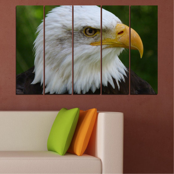 Canvas prints & wall decorative panels - 5 pieces №0613 » Green, Black, Gray, Dark grey » Birds, Portrait, Eagle Form #2