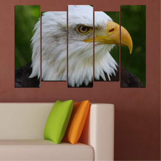 Canvas prints & wall decorative panels - 5 pieces №0613 » Green, Black, Gray, Dark grey » Birds, Portrait, Eagle Form #3