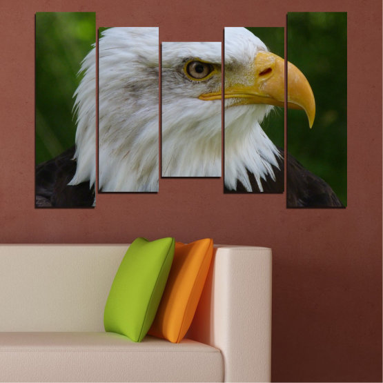 Canvas prints & wall decorative panels - 5 pieces №0613 » Green, Black, Gray, Dark grey » Birds, Portrait, Eagle Form #4