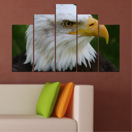 Canvas prints & wall decorative panels - 5 pieces №0613 » Green, Black, Gray, Dark grey » Birds, Portrait, Eagle Form #5