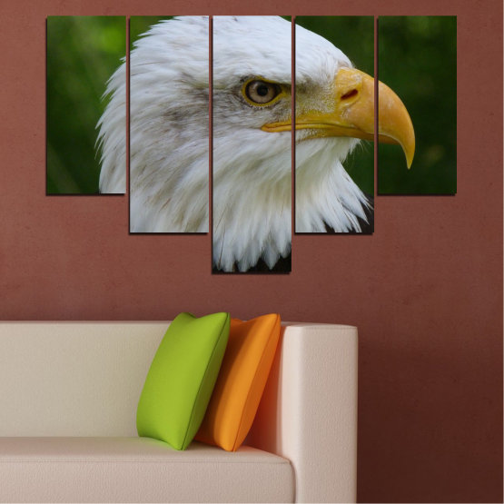 Canvas prints & wall decorative panels - 5 pieces №0613 » Green, Black, Gray, Dark grey » Birds, Portrait, Eagle Form #6