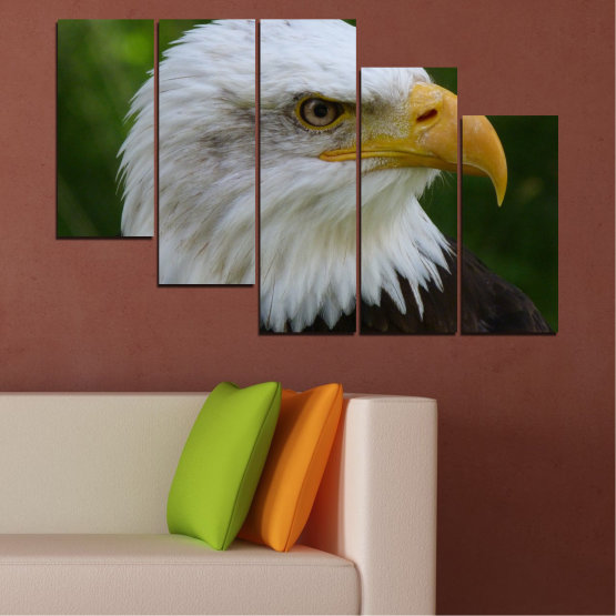 Canvas prints & wall decorative panels - 5 pieces №0613 » Green, Black, Gray, Dark grey » Birds, Portrait, Eagle Form #7
