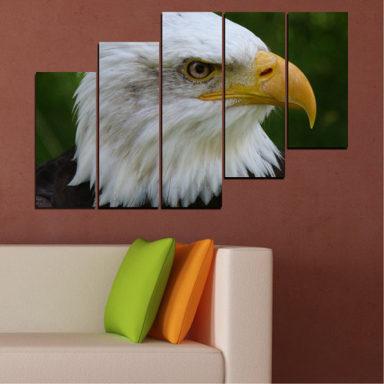 Canvas prints & wall decorative panels - 5 pieces №0613 » Green, Black, Gray, Dark grey » Birds, Portrait, Eagle Form #8