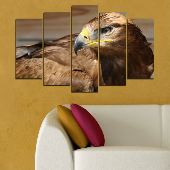 Canvas prints & wall decorative panels - 5 pieces №0615 » Brown, Black, Gray, Dark grey » Birds, Portrait, Eagle Form #1