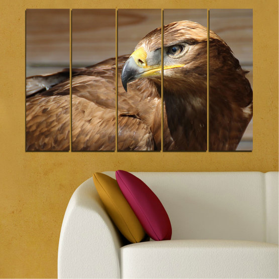 Canvas prints & wall decorative panels - 5 pieces №0615 » Brown, Black, Gray, Dark grey » Birds, Portrait, Eagle Form #2