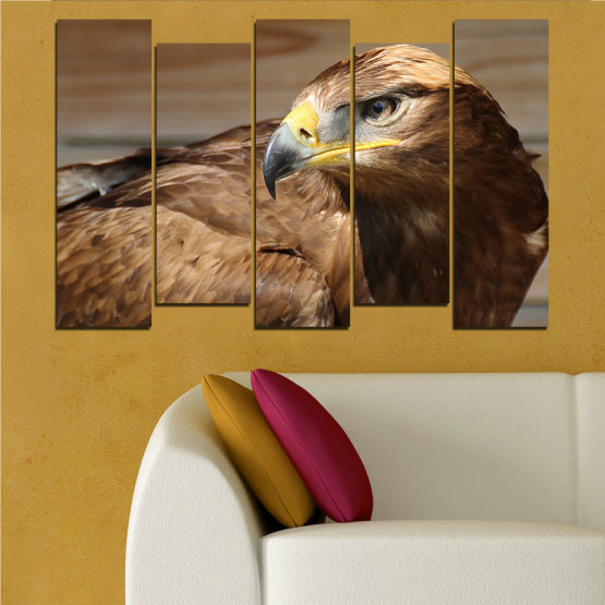 Canvas prints & wall decorative panels - 5 pieces №0615 » Brown, Black, Gray, Dark grey » Birds, Portrait, Eagle Form #3