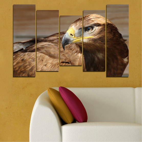 Canvas prints & wall decorative panels - 5 pieces №0615 » Brown, Black, Gray, Dark grey » Birds, Portrait, Eagle Form #4