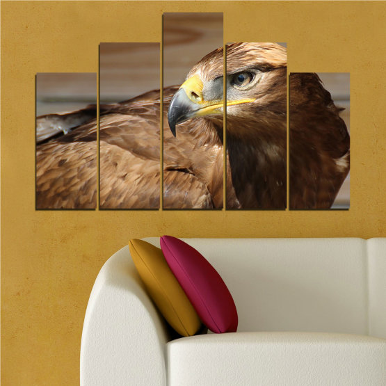 Canvas prints & wall decorative panels - 5 pieces №0615 » Brown, Black, Gray, Dark grey » Birds, Portrait, Eagle Form #5